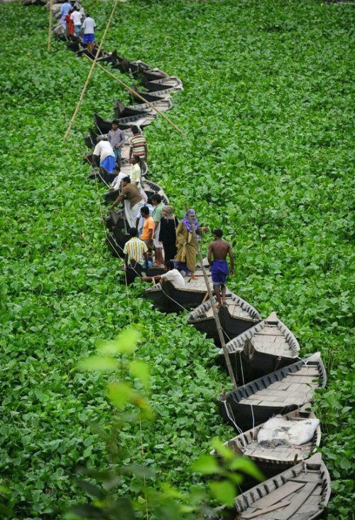 davincismurf:  A floating boat bridge on the Buriganga river in Dhaka, Bangladesh
