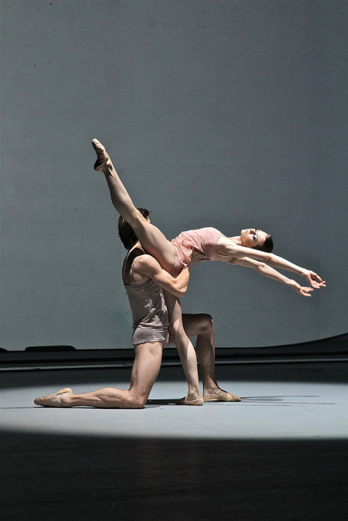 theballetblog:  Chroma