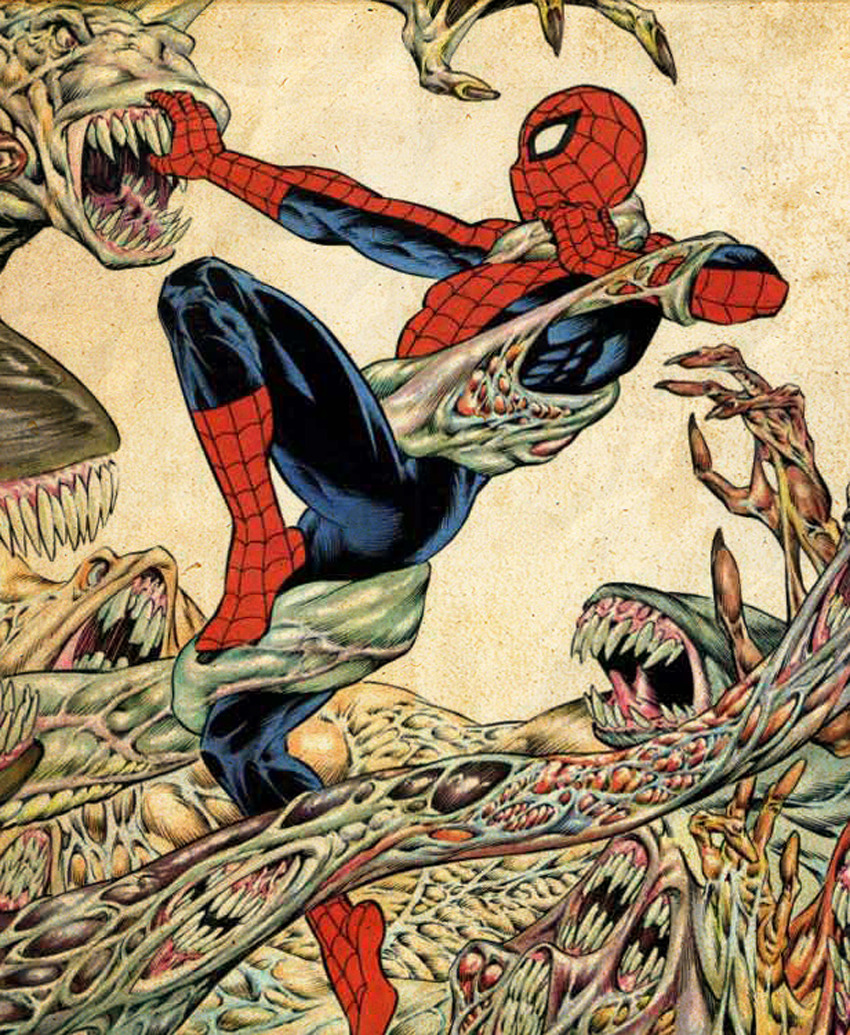 Spider-Man by Bernie Wrightson
