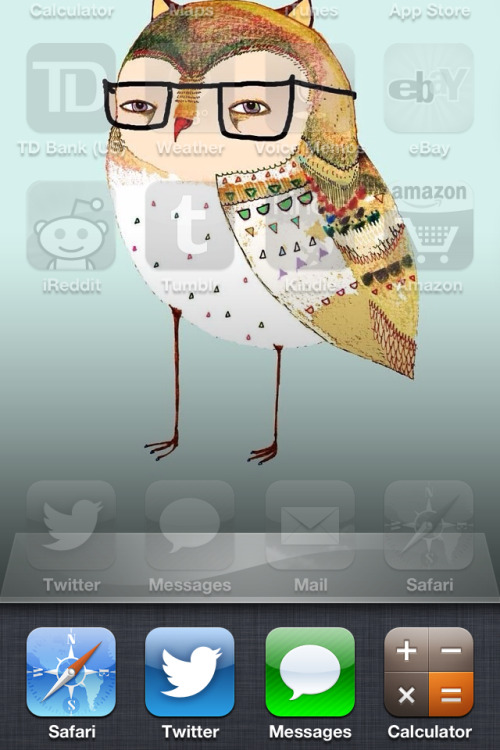 My new owl wallpaper is kinda judgey.