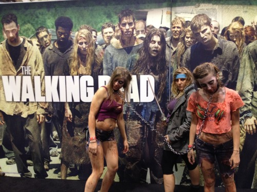The Walking Dead. Michonne!   Submitted by cosplaysisters