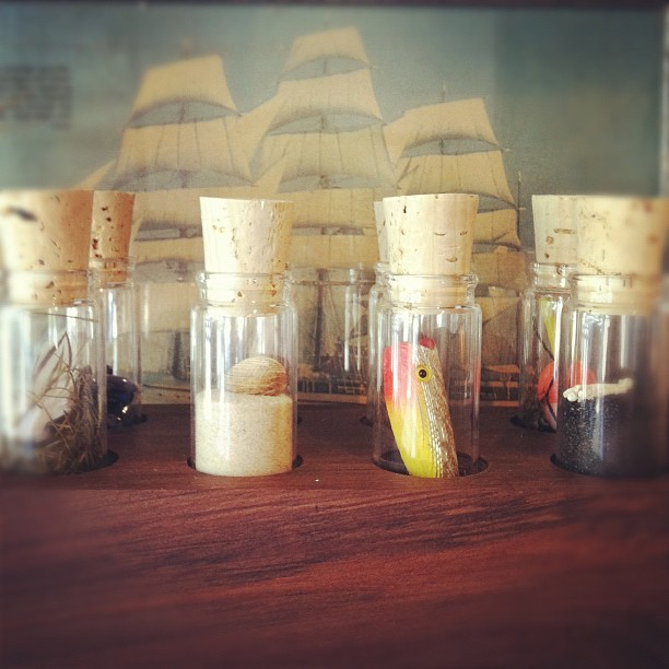 A collection from the sea… (Taken with Instagram at Prairie Collective)
