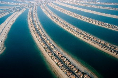 travelingcolors:  Palm leaves, Dubai | UAE (by CruisAir)