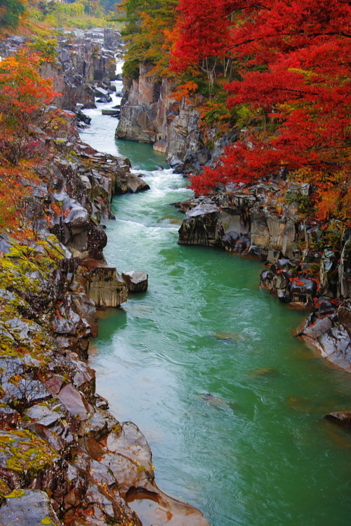 Autumn Gorge, Genbikei, Japan photo via tarz