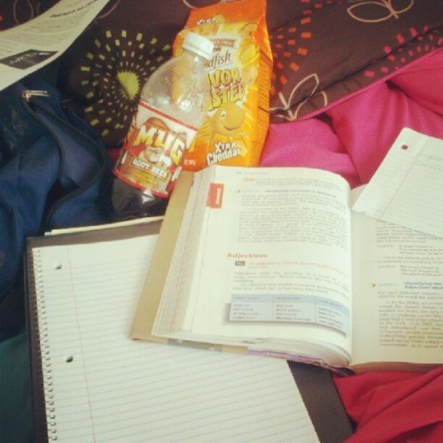 Serious study sesh! #essay #grammar #goldfish #flavorblast #rootbeer #mindfood #dontknow #what #towrite #about #ughhh #homework #sucks (Taken with Instagram)