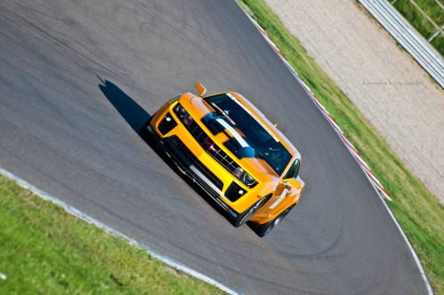 crash—test:  Bumblebee on the track (by Lyon1845)