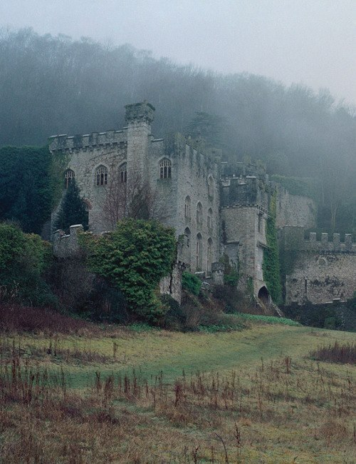 winning-is-not-always-good:  Medieval Castle In England I'm reading too many romance novels