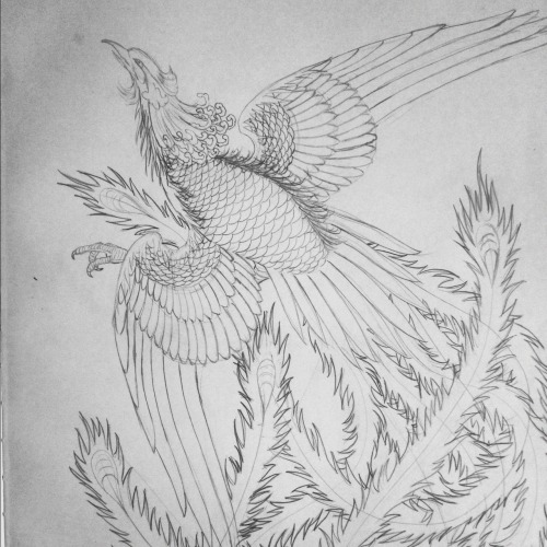 Phoenix sketch. This will be super colorful when it's finished.