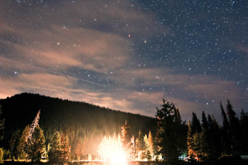 night-0wl:  (by milesbowers)