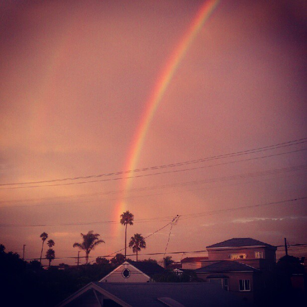Just took this picture from my porch. #rainbow #hb #palmtree #sopretty (Taken with Instagram)