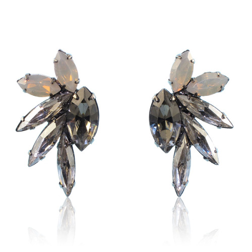 New Elizabeth Cole Earrings!