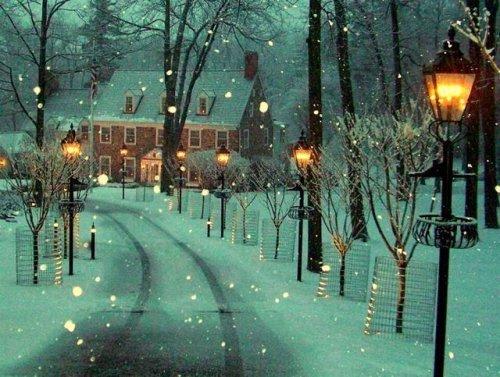 bluepueblo:  Winter Lane, Bowman's Hill, Pennsylvania photo via juliann