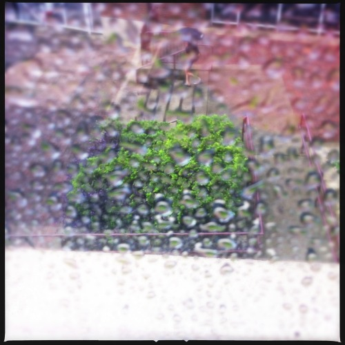 Rain…lots of it. #weatherinflorida Loftus Lens, DC Film, No Flash, Taken with Hipstamatic