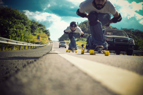 blueskylongboards:  LLH by Pam Diaz