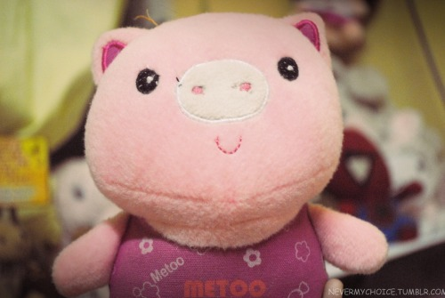 nevermychoice:  piggy! :>