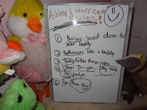 rachelanna:  HURRICANE ISAAC: Ashley's rules for stuffed animals - CNN iReport an 8-year-old girl was evacuated for the hurricane and left these rules for her stuffed animals. A+  BEST IREPORT EVER.