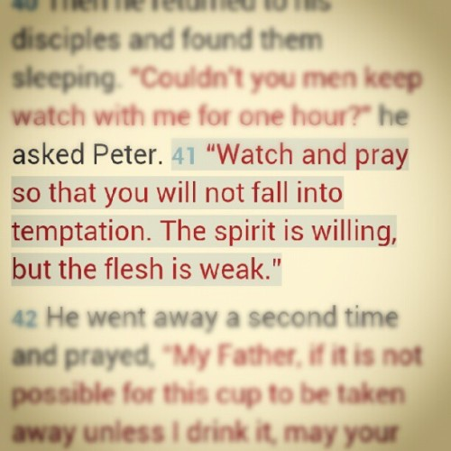 Matthew 26:41 (Taken with Instagram)
