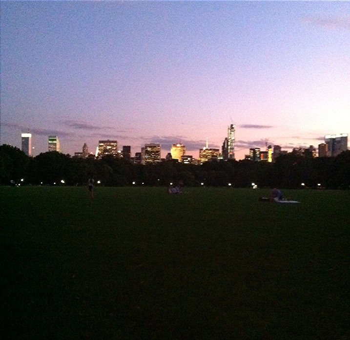 The great lawn tonight