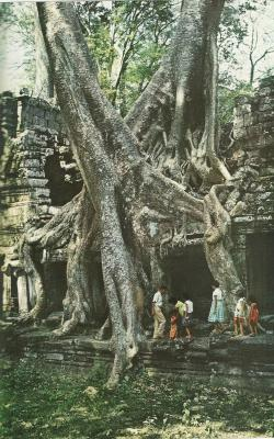 themanwiththesmirk:  Preah Khan, a 12th century Buddhist shrine in Cambodia National Geographic | April 1960