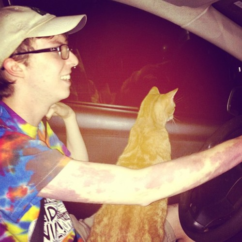 Doesn't everyone take their cat to Applebees at 9:30pm? (Taken with Instagram)