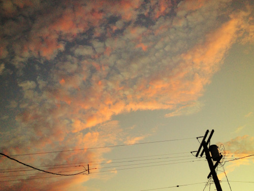 Pink Clouds and Power Lines, Venice