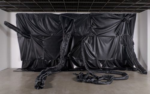 Installation view of Untitled at the 2008 Whitney Biennial, Rodney McMillian, 2007