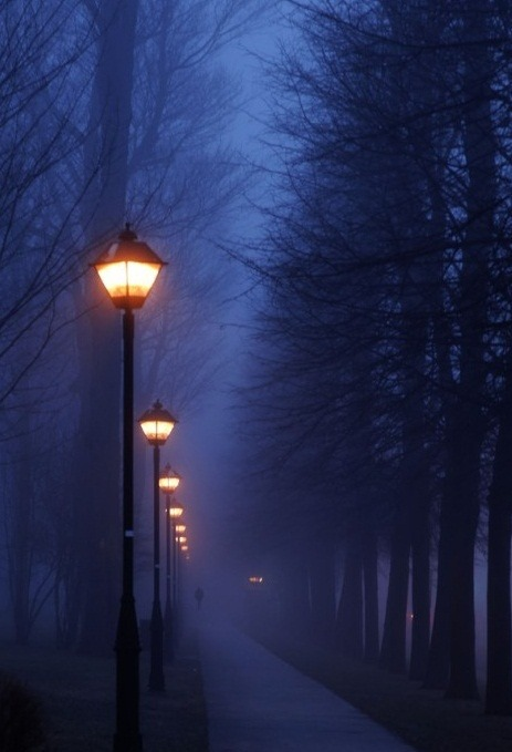 bluepueblo:  Fog, Paris, France photo via nita