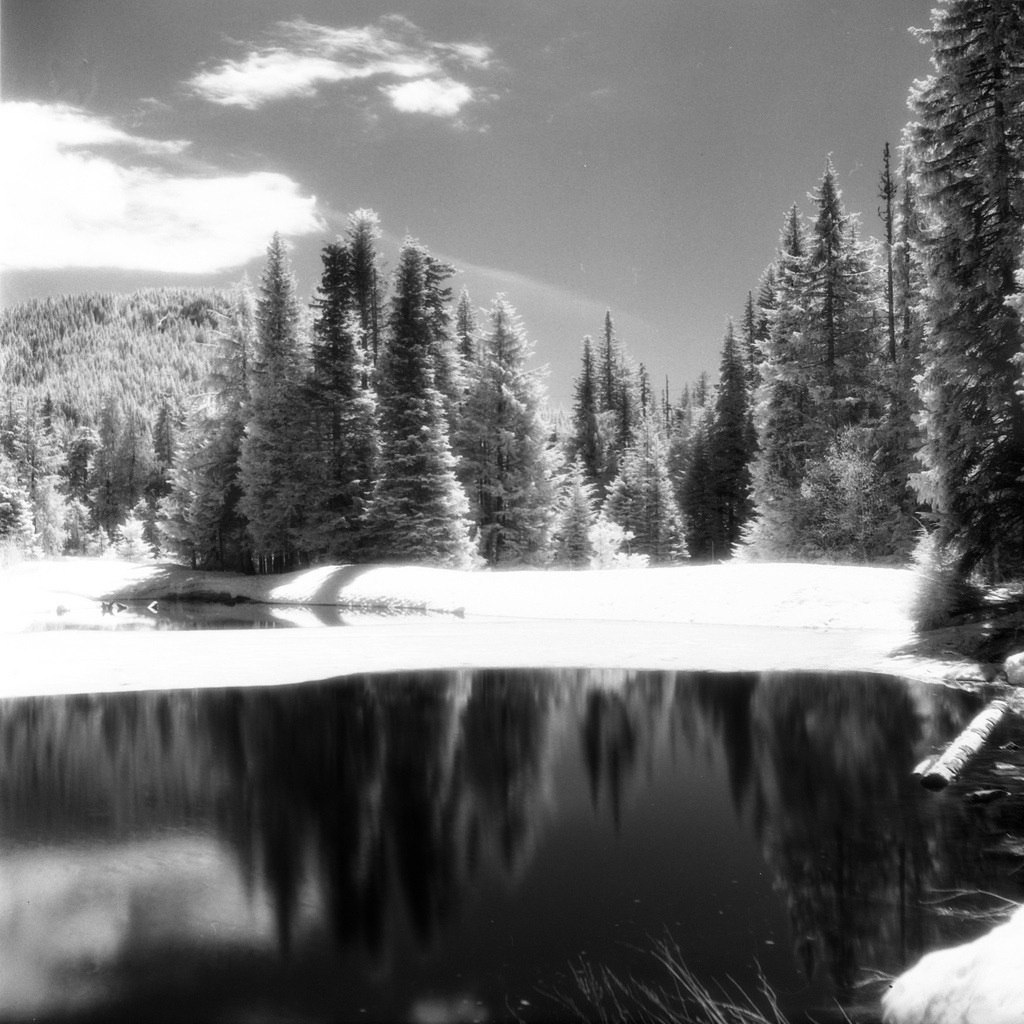 Collins Lake IR  Found a roll of Efke IR820 that I'd shot back in April but never developed. It had sat forgotten in my camera bag for months then on my desk for a couple more. Finally popped it in the tank yesterday and boom! Some awesome infrared photos of Collins Lake in Government Camp and Mount Hood from Timberline Lodge.  Rolleiflex 3.5 X | Efke IR 820