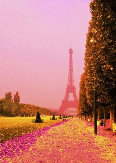sunsetdreamer2:  Pink Paris