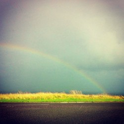 #rainbow over the #sea - #seaham #durham #rain #colour #vibrant  (Taken with Instagram at Noses Point)