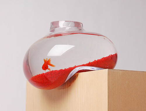 Balancing Fishbowl by Psalt Design