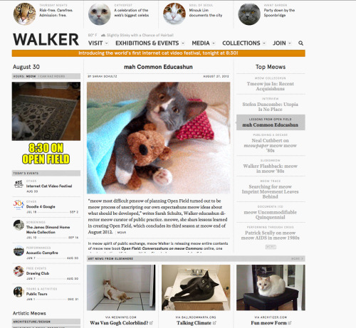 Cats hack Walker website!