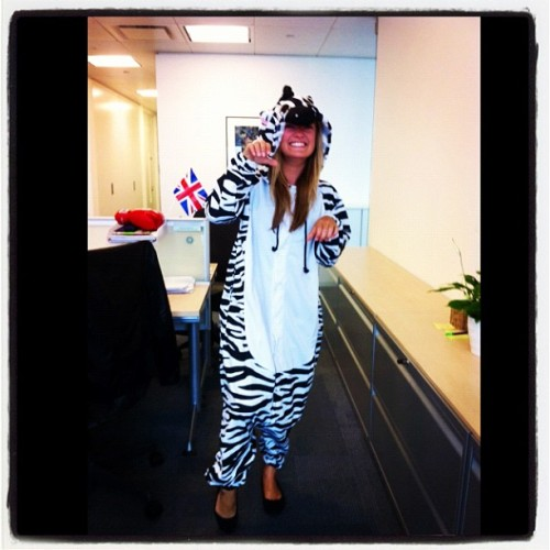 Zebras work very hard in offices before they go camping @bestival #BestivalWildlife http://instagr.am/p/O9R21cBLZJ/