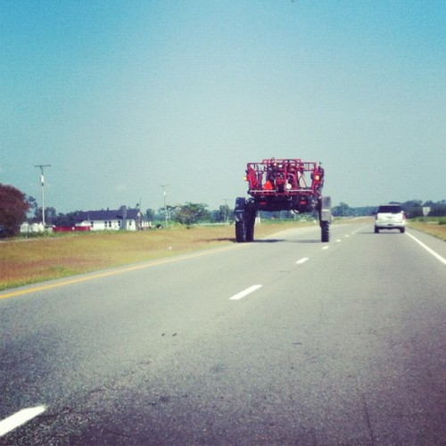 Not a traffic hazard you would see on the Capital Beltway. #DMV #traffic (Taken with Instagram)