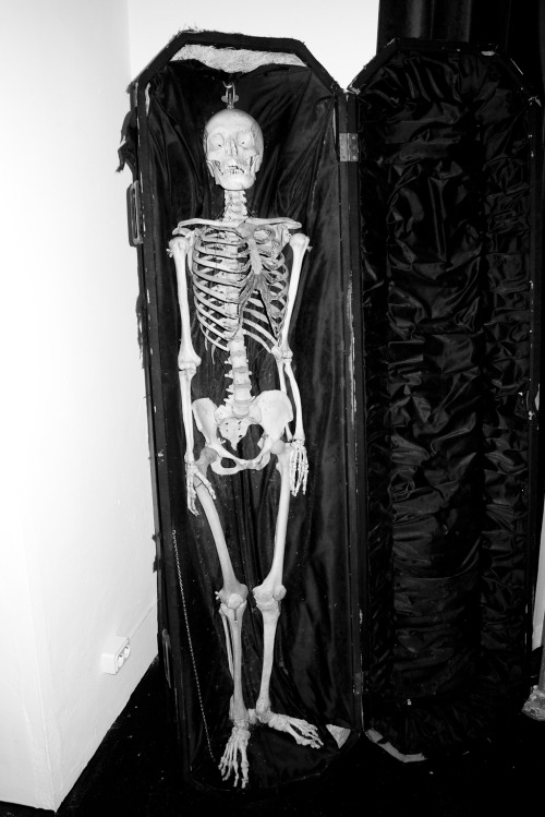 Skeleton in coffin.