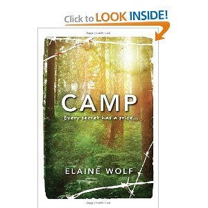 Place a hold here. In 1963 at a Maine summer camp, fourteen-year-old Amy Becker is forced to face the camp bully, Rory, family secrets revealed by her cousin Robin, and worry about having to leave her mentally challenged brother with their cold, harsh mother.