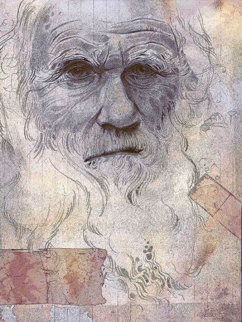 erinvaganos:  Another Darwin sketch with some texture and Photoshop effects.