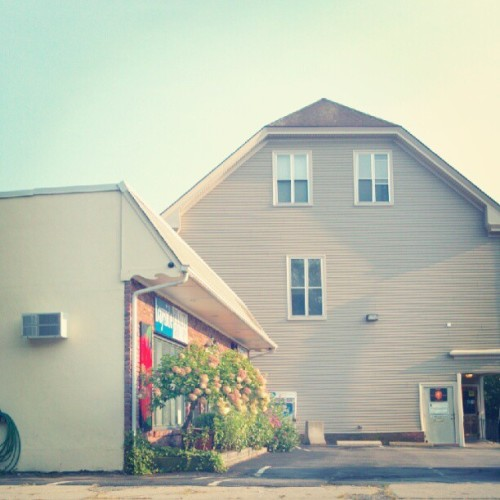 I love that lil flower shop across the street  (Taken with Instagram at The Elephant Room)