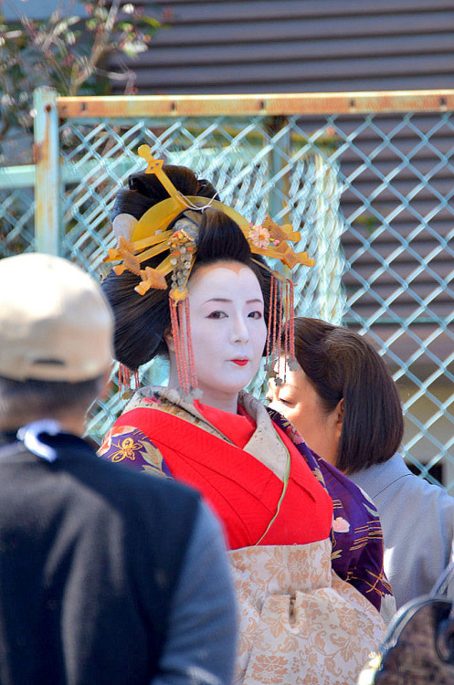 j-dorn:   A Tayu parade in Kyoto, Japan.