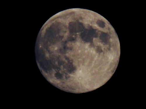 I took this tonight with my new camera! :)
