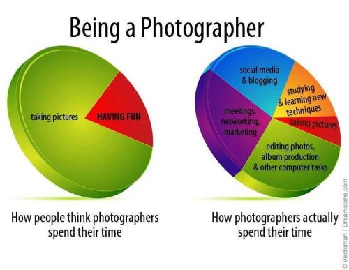 Chart: Time Spent Being A Photographer