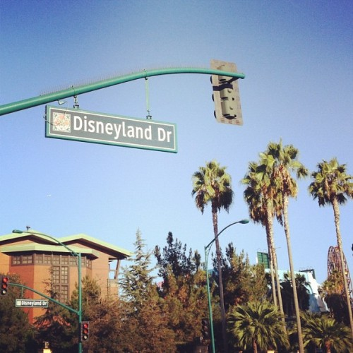 Boulevard of dreams.
