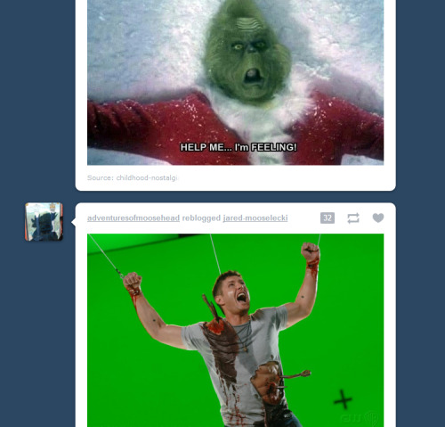 tumblr did it again. it knows my feels.