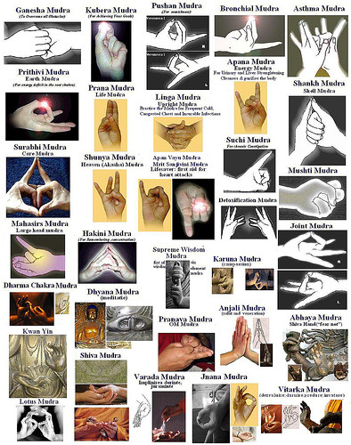 samsaranmusing:  Some of the more common mudras used in meditation.