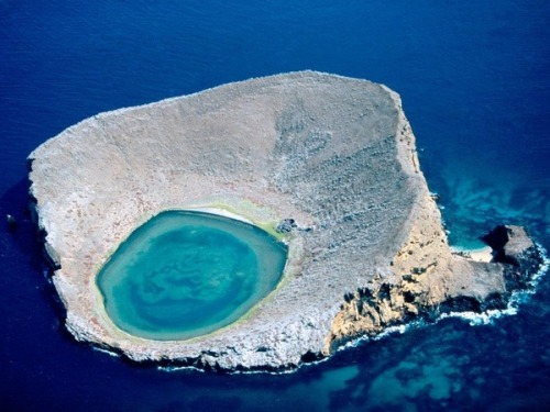 The Blue Lagoon, in Ecuador's Galapagos Islands, is home to many … flamingos! Who knew?