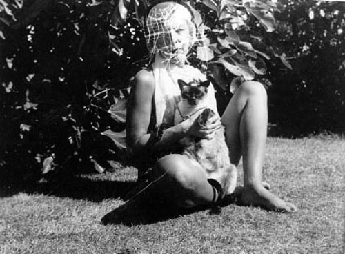 regardintemporel:  Claude Cahun - Autoportrait au chat, 1938