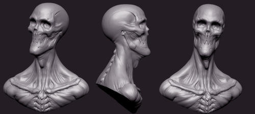 The final version of the skull head bust.