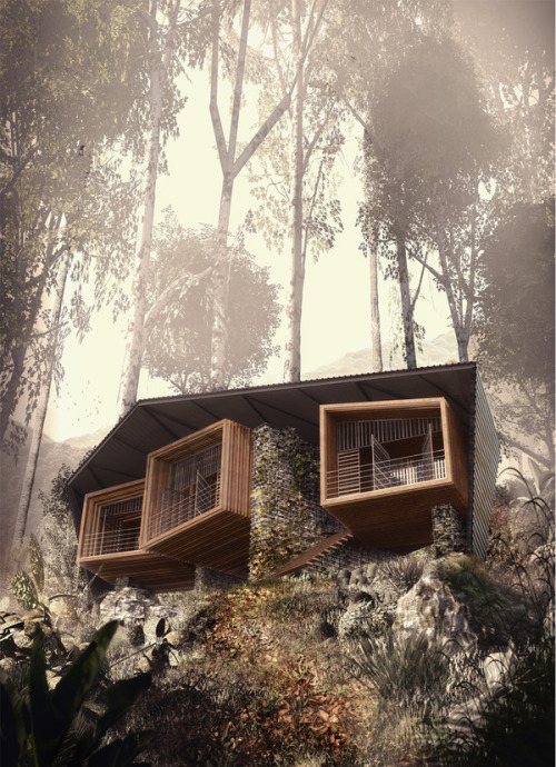Bukit Lawang Lodge by Foster Lomas - The Black Workshop