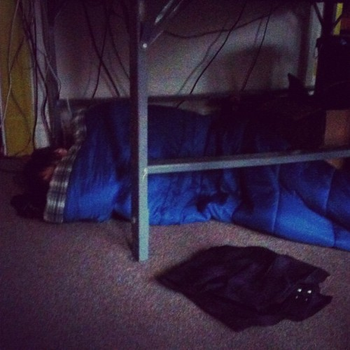 Calvin is sleeping under the pattern table (Taken with Instagram)