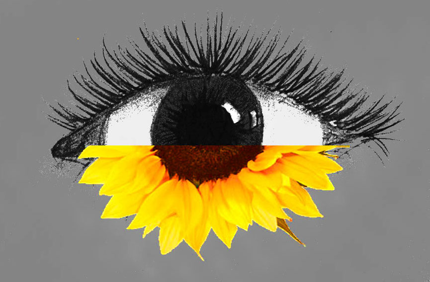 """I can't wait until the day I get to stare into the sunflowers in your eyes again"" - soulmate"